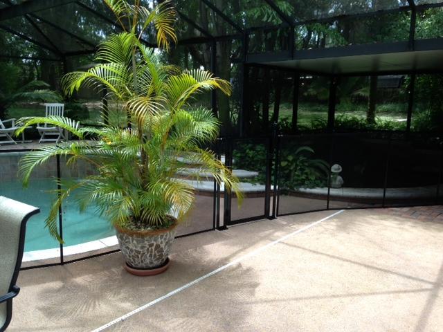 pool fence gotha 129