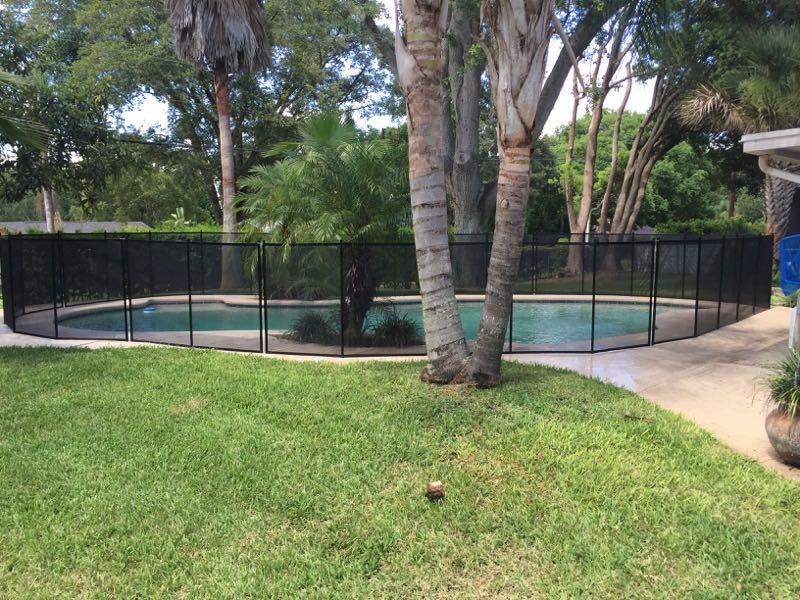 Swimming Pool Visitors